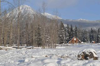 Photo 4: 16563 OLD BABINE LAKE Road in Smithers: Smithers - Rural House for sale (Smithers And Area (Zone 54))  : MLS®# R2537253