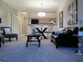 Photo 9: # 302 1623 E 2ND AV in Vancouver: Grandview VE Condo for sale (Vancouver East)  : MLS®# V1016969