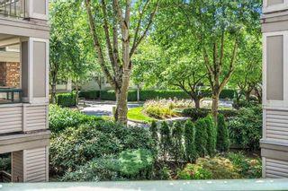 "Photo 14: 202 22025 48 Avenue in Langley: Murrayville Condo for sale in ""Autumn Ridge"" : MLS®# R2477542"