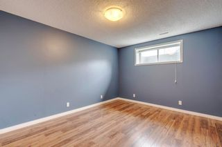 Photo 38: 1571 COPPERFIELD Boulevard SE in Calgary: Copperfield Detached for sale : MLS®# A1107569