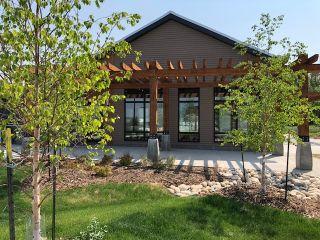 Photo 5: 1507 202 Street in Edmonton: Zone 57 House for sale : MLS®# E4223350