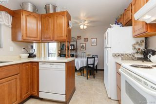 Photo 13: 4389 Columbia Dr in VICTORIA: SE Gordon Head House for sale (Saanich East)  : MLS®# 813897