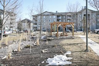 Photo 30: 2206 604 8 Street SW: Airdrie Apartment for sale : MLS®# A1081964