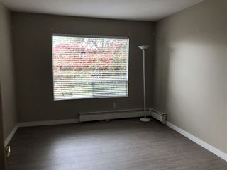 Photo 9: 302 1412 W 14TH AVENUE in Vancouver West: Home for sale : MLS®# R2312905