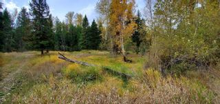 Photo 24: 789 Shuswap River Drive, in Lumby: House for sale : MLS®# 10240114
