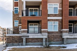 Photo 25: 1105 3727 Sage Hill Drive NW in Calgary: Sage Hill Apartment for sale : MLS®# A1076204