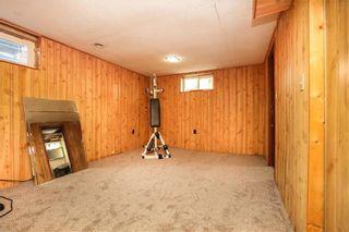 Photo 29: 728 Buchanan Boulevard in Winnipeg: Crestview Residential for sale (5H)  : MLS®# 202122702