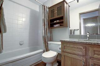 Photo 23: 175 Hawkwood Drive NW in Calgary: Hawkwood Detached for sale : MLS®# A1064319