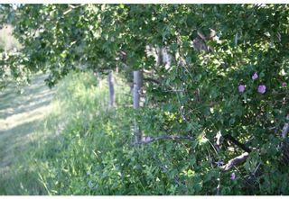 Photo 10: 4 4141 Twp Rd 340: Rural Mountain View County Land for sale : MLS®# C4123350