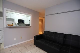 Photo 8: 1 927 19 Avenue SW in Calgary: Lower Mount Royal Apartment for sale : MLS®# A1056354