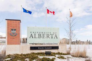 Photo 44: 11745 83 Avenue in Edmonton: Zone 15 House for sale : MLS®# E4230209