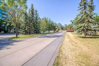 Photo 39: 231 222 RIVERFRONT Avenue SW in Calgary: Chinatown Apartment for sale : MLS®# A1091480