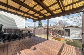 Photo 10: 49 Templeson Crescent NE in Calgary: Temple Detached for sale : MLS®# A1089563