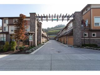 """Photo 3: 31 10550 248 Street in Maple Ridge: Thornhill MR Townhouse for sale in """"THE TERRACES"""" : MLS®# R2319742"""