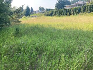 Photo 10: Lot 10 Tamerac Terrace in Sorrento: Blind Bay Land Only for sale (Shuswap)  : MLS®# 10235968