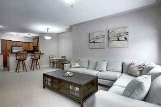 Photo 21: 136 10 Discovery Ridge Close SW in Calgary: Discovery Ridge Apartment for sale : MLS®# A1057299