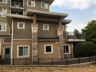 "Photo 16: 101 12350 HARRIS Road in Pitt Meadows: Mid Meadows Townhouse for sale in ""KEYSTONE"" : MLS®# R2202305"