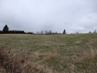 Photo 24: 32 Sutherlands Lane in Scotsburn: 108-Rural Pictou County Farm for sale (Northern Region)  : MLS®# 202108950