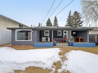 Photo 36: 7727 47 Avenue NW in Calgary: Bowness Detached for sale : MLS®# A1079971