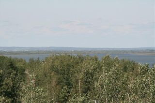 Photo 9: 4 VIEW Place in Rural Stettler No. 6, County of: Rural Stettler County Land for sale : MLS®# A1066068