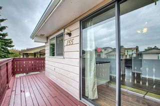 Photo 46: 155 Templevale Road NE in Calgary: Temple Detached for sale : MLS®# A1119165