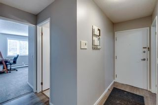 Photo 12: 2011 2000 Edenwold Heights in Calgary: Edgemont Apartment for sale : MLS®# A1142475