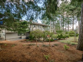 Photo 26: 1937 Cougar Cres in COMOX: CV Comox (Town of) House for sale (Comox Valley)  : MLS®# 833896