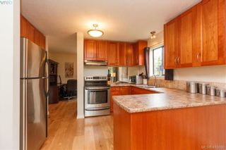 Photo 19: 6 4350 West Saanich Rd in VICTORIA: SW Royal Oak Row/Townhouse for sale (Saanich West)  : MLS®# 813072