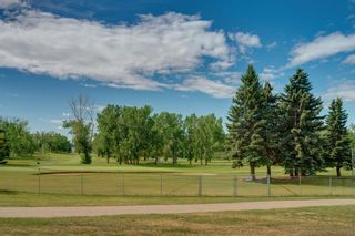 Photo 5: 3204 15 Street NW in Calgary: Collingwood Detached for sale : MLS®# A1124134