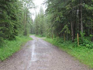 Photo 45: 70041 Highway 591: Rural Clearwater County Detached for sale : MLS®# C4305359
