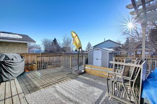Photo 30: 211 Doverglen Crescent SE in Calgary: Dover Detached for sale : MLS®# A1060305