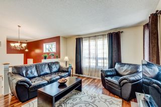 Photo 6: 16 Meadow Close: Cochrane Detached for sale : MLS®# A1088829