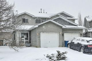 Photo 46: 14 Everglade Drive SE: Airdrie Semi Detached for sale : MLS®# A1067216