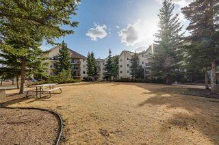 Photo 33: 302 10636 120 Street in Edmonton: Zone 08 Condo for sale : MLS®# E4236396