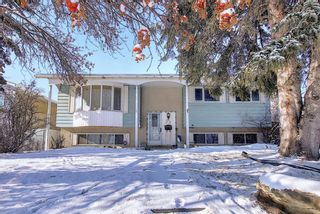 Photo 1: 67 Penmeadows Place SE in Calgary: Penbrooke Meadows Detached for sale : MLS®# A1066670