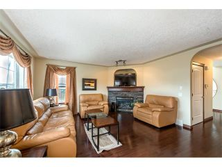 Photo 10: 100 SPRINGMERE Grove: Chestermere House for sale : MLS®# C4085468