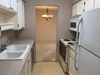 """Photo 15: PH4 2320 W 40TH Avenue in Vancouver: Kerrisdale Condo for sale in """"Manor Gardens"""" (Vancouver West)  : MLS®# R2591947"""