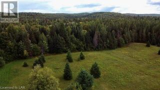 Photo 32: 300 HAMILTON LAKE Road in South River: Vacant Land for sale : MLS®# 40159931