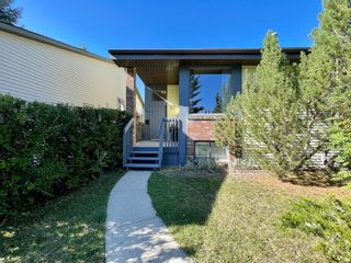 Photo 37: 248 CEDARDALE Bay SW in Calgary: Cedarbrae Detached for sale : MLS®# A1146356