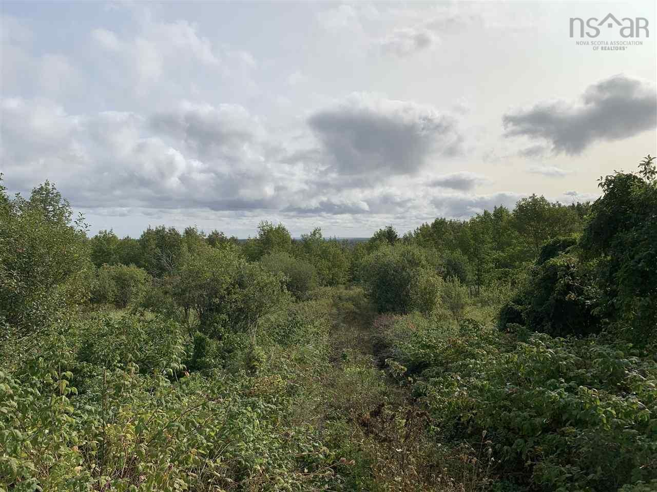 Main Photo: Lot Dan Fraser Road in Greenhill: 108-Rural Pictou County Vacant Land for sale (Northern Region)  : MLS®# 202120254