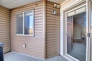 Photo 17: 318 355 Taralake Way NE in Calgary: Taradale Apartment for sale : MLS®# A1060630