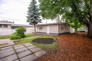 Photo 43: 9151 150 Street in Edmonton: Zone 22 House for sale : MLS®# E4250068