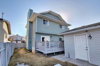 Photo 43: 132 Ventura Way NE in Calgary: Vista Heights Detached for sale : MLS®# A1081083