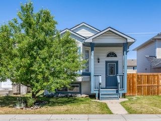 Main Photo: 36 Harvest Rose Circle NE in Calgary: Harvest Hills Detached for sale : MLS®# A1127473