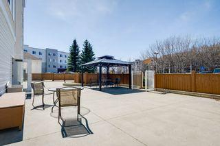 Photo 47: 215 78 McKenney Avenue: St. Albert Condo for sale : MLS®# E4265004
