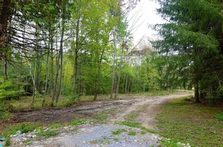 Photo 5: 221 Old Percy Road in Cramahe: Castleton Property for sale : MLS®# X5398941