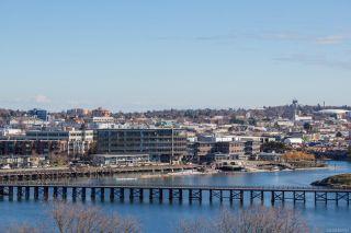 Photo 36: 105 103 E Gorge Rd in : Vi Burnside Condo for sale (Victoria)  : MLS®# 869015