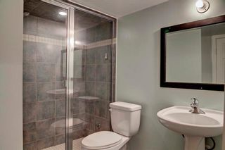 Photo 27: 279 CHAPALINA Terrace SE in Calgary: Chaparral House for sale : MLS®# C4128553