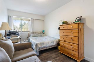 Photo 5: 305 377 Dogwood St in : CR Campbell River Central Condo for sale (Campbell River)  : MLS®# 872450