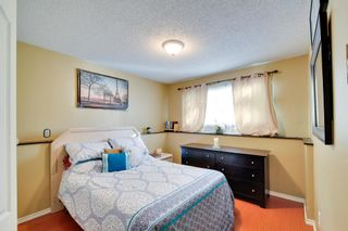 Photo 13: 10701 141 Street in Surrey: Whalley House for sale (North Surrey)  : MLS®# R2115012